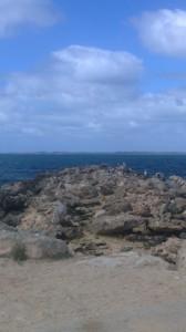 Coogee Beach 5