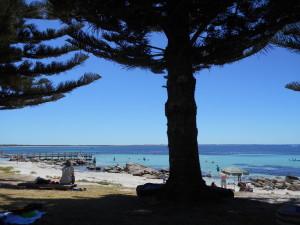 Augusta Beach 3